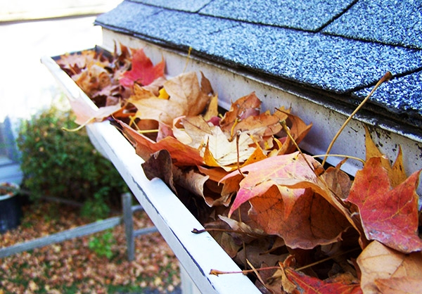 gutter-cleaning-rental.jpg