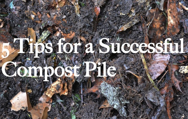 compact-power-composting-tips.jpg